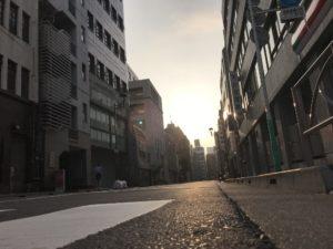 朝日の射し込む道路