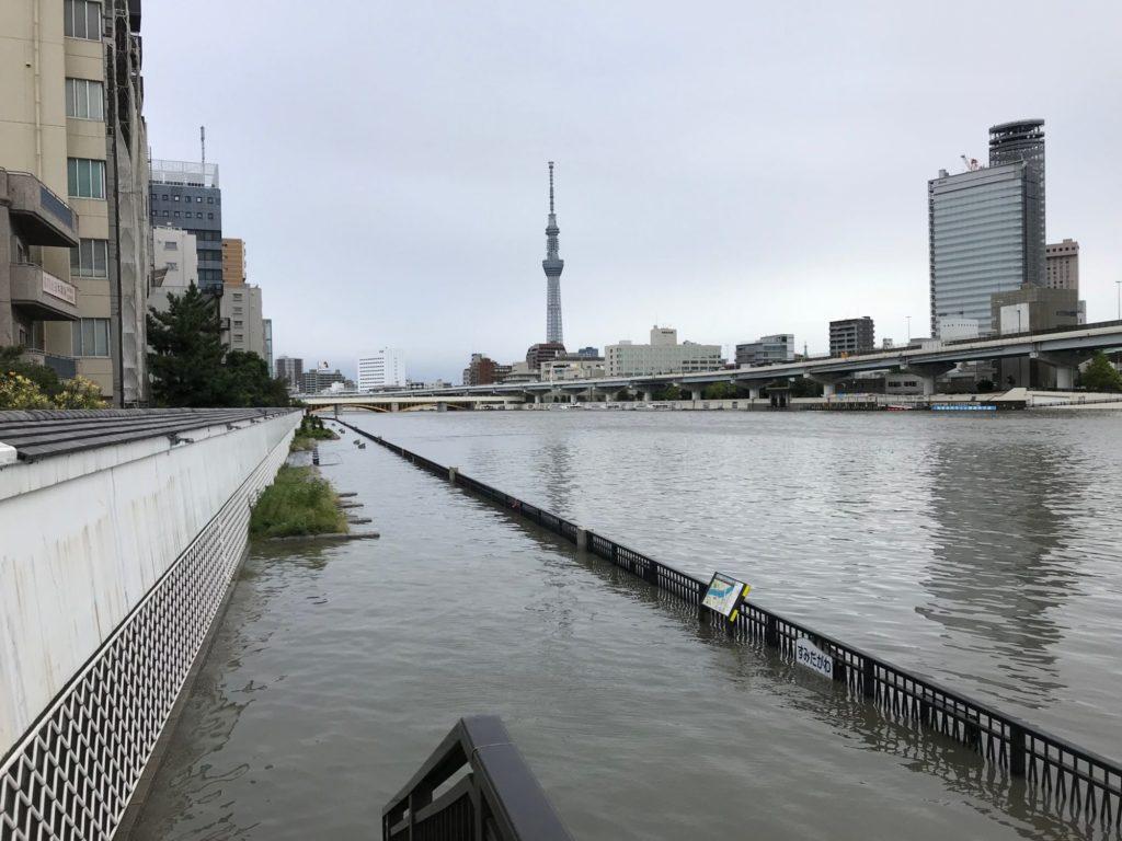 増水してる隅田川テラス