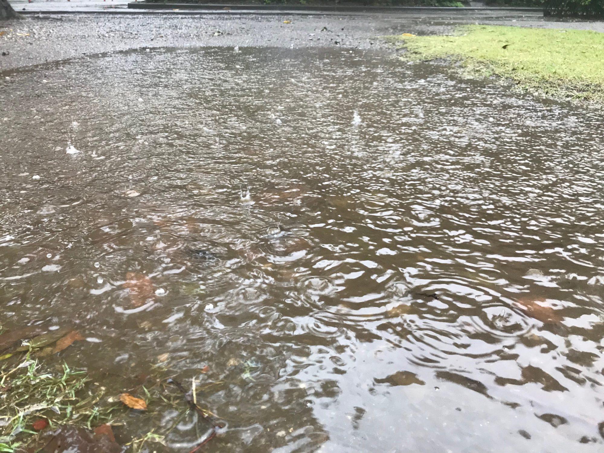 水溜りに雨が落ちている